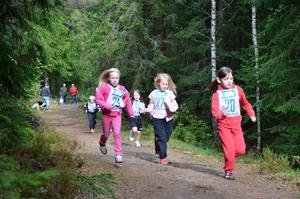 Lilla Kopparbergsloppet är en tävling i terrängmiljö.