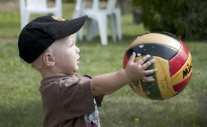 Vårt barnbarn Gustav Löfberg, 1,5 år, behöver inte några avancerade leksaker för att roa sig. Han nöjer sig med hunden Lexis slitna fotboll, bara farbror Andreas, idolen för tillfället, ställer upp och sparkar med honom på gräsmattan.