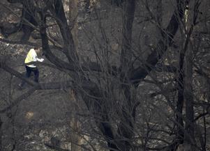 En polisman inspekterar skadorna efter att elden dragit förbi.
