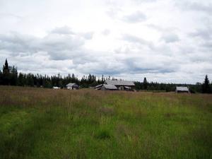 Lillhärjåbygget uppenbarar sig efter 7 kilometers vandring över myr och skog.