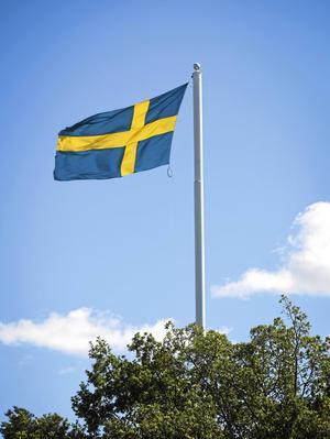 PRO i Mora firade traditionsenligt Nationaldagen på Åkersta.