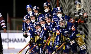 Spelar första borta. I bandypremiären möter Falu BS Gripen. Första hemmamatchen blir mot Bollnäs. Foto: Johan Solum/Arkiv