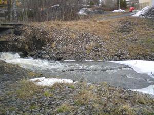 Visst är det ett vårtecken när Mjällebäcken forsar och det finns is kvar i bäcken, det tyckte Alexander Hagvall när han och mormor var ute och gick. Foto: Mormor Marita