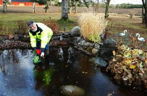 """Sune Östman tömmer sin damm i trädgården. """"För mig får vintern gärna komma när som helst"""", säger han."""