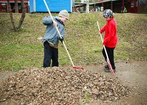 Axel Jönsson 7 år och Timmy Agerberg 8 år såg till att alla höstens löv samlades in och togs om hand.