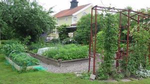 Köksträdgården.