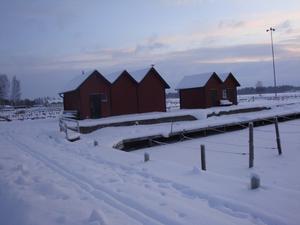 Kallt på Öster Mälarstrand