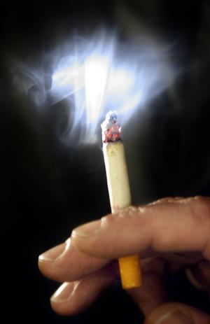 En fimp i vardande. Regeringen vill utreda om det behövs fler rökfria miljöer än bara på krogen.