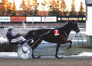Det hann aldrig bli någon spänning i striden om kuskchampionatet på Östersundstravet efter att Ulf Ohlsson vunnit med Fetiche Boko i tredje loppet.