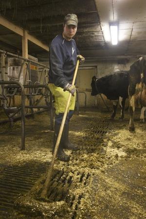 Andreas Thorén arbetar heltid på sina föräldrars gård.