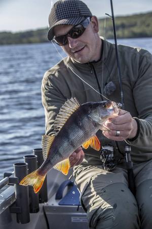 Tony Nyman älskar sportfiske - och den vackra abborren.