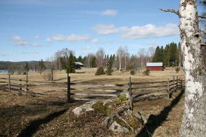 Vid mitten av 1800-talet fanns det 65 byggnader fördelade på tio olika vid sjön Skalen. Stefan tog över gården Skalen för 12 år sedan och har lagt ner mycket tid och arbete på att öppna upp fälten ner mot sjön och få fram de gamla husgrunderna.