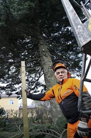Berth Nilsson är tillbaka som trädfällare efter en olycka i hemmet för tre år sedan.