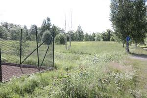 Det cirka 1,4 hektar stora markområdet invid Kolbäcksån i Morgårdshammar är sedan flera år tillbaka planlagt och godkänt för exploatering.