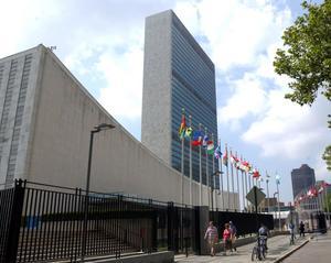 Vad får vi egentligen för pengarna vi ger till FN?