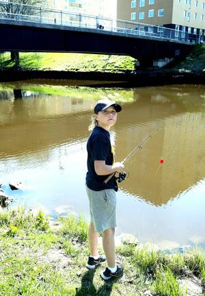 Valdemar Larsson kan sina rekordfiskar i Selångersån som ett rinnande vatten. Gädda, 8,5 kilo. Öring 1,2 kilo. Abborre 900 gram och Brax 4,2 kilo.