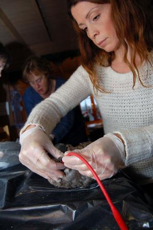 Jenny Mellbi som vill hjälpa skadade djur, bland annat ekorrar och igelkottar i Stockholm, provar på sondmatning.
