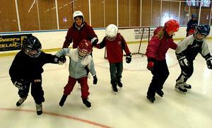 Bilden är tagen tio år efter att Strandhallen invigdes. Sedan dess har massor av skolelever fortsatt att lära sig åka skridskor och  många har gått vidare som framgångsrika  hockeyspelare. Strandhallen har haft både herr- och damhockey.