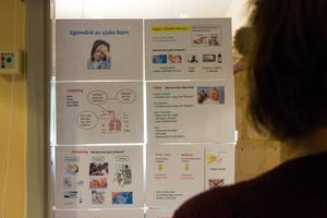 Idén till satsningen kommer från Stockholmsförorten Rinkeby. Där har det så kallade Rinkebyprojektet minskat antalet besök till akutsjukvården drastiskt.