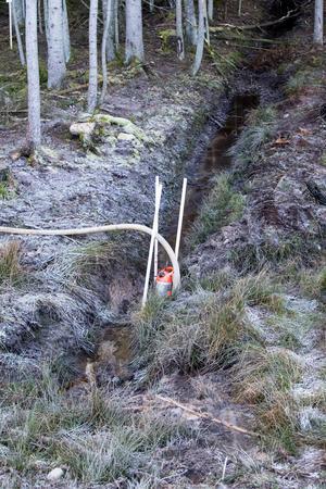 En pump har satts in i det aktuella diket som ska se till att vattnet stannar inom kontrollerat område.