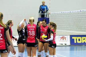 Örebro Volley fick se sig besegrat i den första SM-semifinalen mot Engelholm.