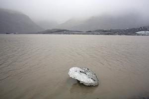 Isarna smälter allt snabbare och forskarvärlden är överens om vikten av att snabbt avveckla beroendet av fossila bränslen – men motståndarna är många och kapitalstarka. Foto: AP/Andy Wong