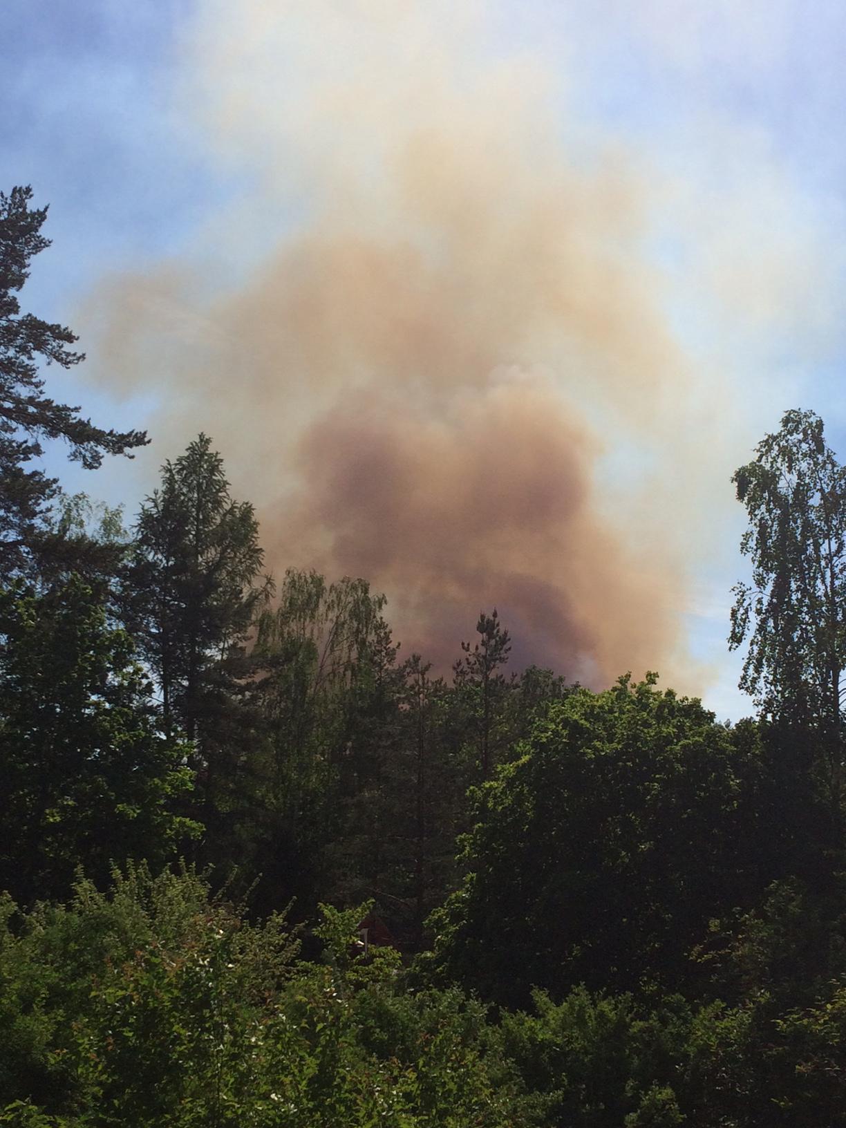 Stor skogsbrand under kontroll
