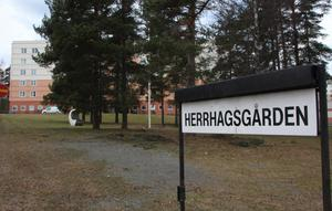 Herrhagsgården är Faluns största äldreboende med 77 lägenheter och runt hundra anställda.