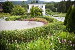 Trädgårdsföreningarna i kommunen har börjat höra av sig och vill komma på besök till Margareta Olssons trädgård. Något hon ser fram emot. Sin gröna oas delar hon gärna med sig av.