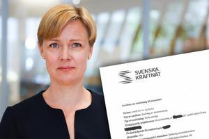 Svenska kraftnät har sekretessbelagt vissa uppgifter i Vattenfalls ansökan om att få ta ut mer el i Gävle- och Sandvikenområdet.