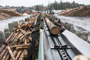 Efter den förväntade skogsägarfusionen i norra Sverige kommer det fortsättningsvis att finnas tre stora block inom det som tidigare benämnts  som LRF-sfären: Södra, Mellanskog och Norra Skog.  Foto: Tina Stafrén.