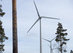 Söndagen den 27 september är det folkomröstning om den planerade vindkraftparken på Ripfjället i Malung-Sälens kommun. Foto: Fredrik Sandberg/TT