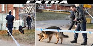 Bilderna är från sökinsatsen samma dag som mannen hittades död. Bild: Eva-Lena Olsson.