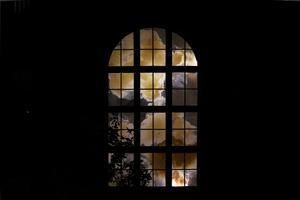 """Tobias Sjöberg gjorde hösten 2018 två större fönstermålningar för Grafikens Hus utställningen Herbarium på Art Lab Gnesta: """"Två monumentala industrifönster, jättestora, nästan sakrala, som kyrkfönster. Foto: Privat"""