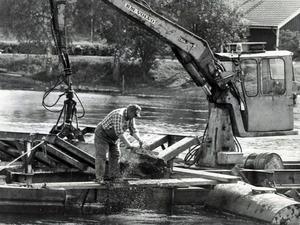 Flottningen vid Torsång har upphört för många år sedan. Den här bilden är från juni 1986 då man tog upp sjunktimmer från älven vid Torsång.  Foto: Arkivbild