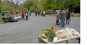 Gör som ekorren och passa på att fylla upp förrådet. Lördag 28 september ordnas den populära marknaden Naturens skafferi i Hjortkvarn.  Den pågår kl 11-14.