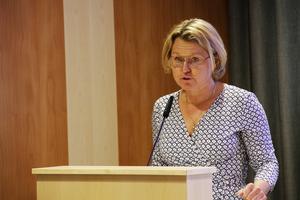 – Stötande att erbjuda planerad vård och tandvård till personer som vistas illegalt i Sverige, ansåg moderaten Maria Molin.