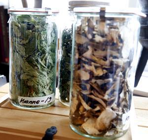I burkar som fyller hyllorna i matsalen finns många exotiska men ofta ändå lokala ingredienser. Torkad kvanne och svamp samsas om hyllplatsen med myskmadra och