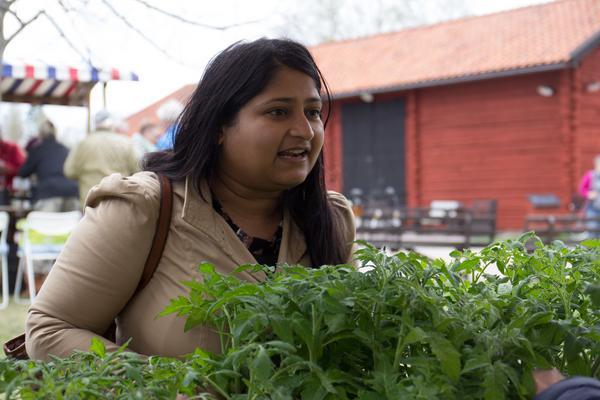 Som  nybliven husägare  och ambitionen att självhushålla med grönsaker och bär fanns det mycket som lockade Arshiya Ali.