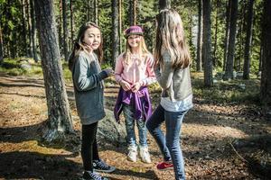 Nellie Bergman, Tilde Andersson och Selma Persson har alla gjort fågelholkar.