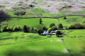 Femtio nyanser av grönt i The Lake District i norra England. Foto: Tomas Polvall