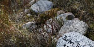 Speciellt för Arholma Minneslund är den stenmur som omgärdar platsen. Där får anhöriga lägga en minnessten. Stenens storlek ska maximalt vara vad en normalstark person kan bära. På stenen kan en inskription göras med den avlidnes namn, födelse- och dödsdatum.