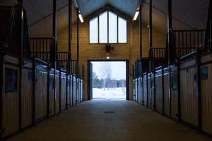 I april kommer stallet återigen att husera hästar – och redan nu har 15 av 20 stallplatser bokats upp.