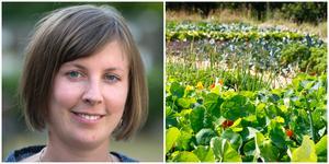 Hanna Klingborg är säker på att odlingslotterna blir verklighet så småningom.