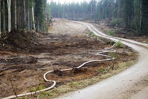 Totalt finns cirka 5,5 mil begränsningslinje – de polska brandmännen ansvarar för en stor del av sträckan.