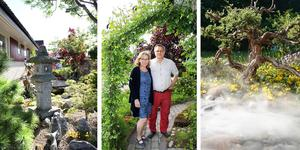 Sällskapet Trädgårdsamatörerna och Mälardalskretsen håller öppna trädgårdar för allmänheten i år och Tarja och Roland Kalnins trädgård är en av dem. Alla är välkomna tisdagen 29 juni klockan 11-15 på Spisgatan 11 i Västerås.
