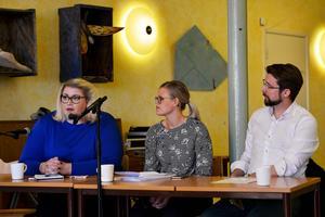 Moderaten Viktoria Jansson, längst till vänster, ställde frågan