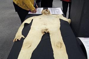 Huden är människans största organ. Den kan väga tio kilo. Här ses en människas hud liggande på ett bord.