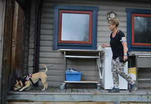 Västra Härjedalens Brukshundsklubb söker pengar för nya agilityhinder. På bilden hunden Janis med föraren Linnea Eklund från sommarens tävling i nose work. Foto: Privat