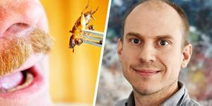 Nils Österström är vd för Tebrito. Hans förhoppning är att under året kommer de börja med en storskalig produktion av insekter i norra Dalarna.
